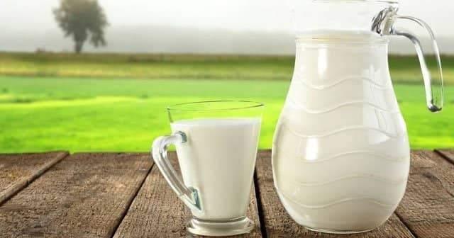 At Sütü Nerede Satılır, Fiyatı Ne Kadar, Kımızın Faydaları Nelerdir