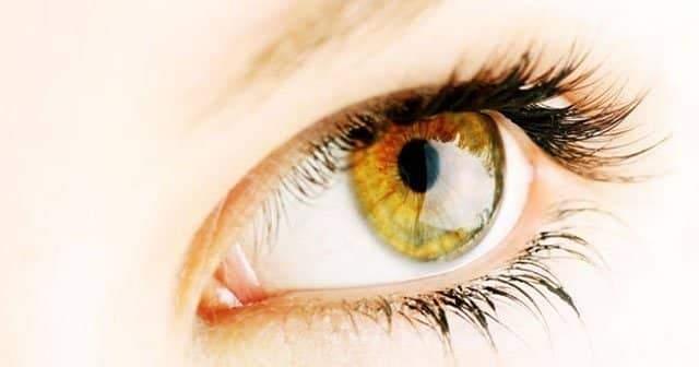 Göz İltihabı, Enfeksiyonu Bitkisel Tedavi, Şifalı Bitkiler