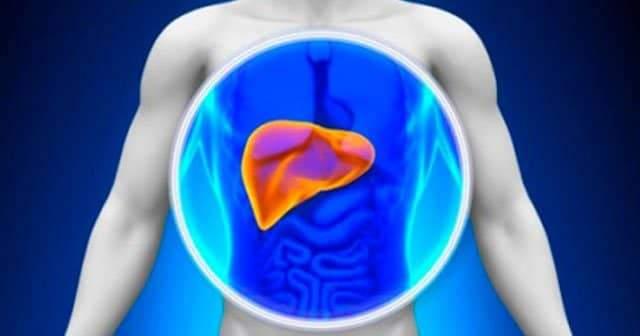 Karaciğer Yağlanması Nedir, Neden Olur, Nasıl Anlaşılır, Nasıl Geçer?