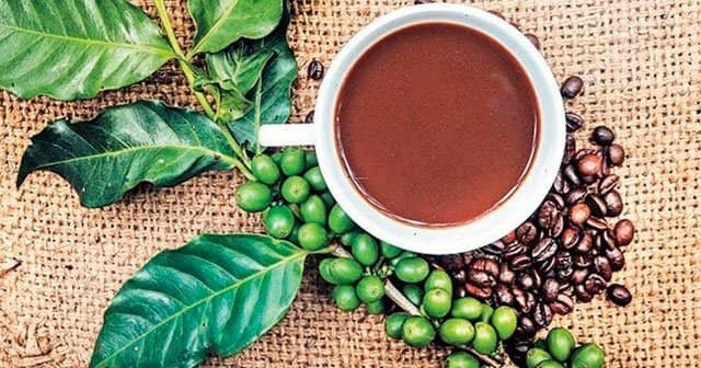 Yeşil Kahve Diyeti, Yeşil Kahve Çekirdeği İle Zayıflama