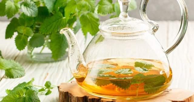 Melisa Çayının Zararları, Limon Melisa Oğul Otu Çayı Nasıl Demlenir?