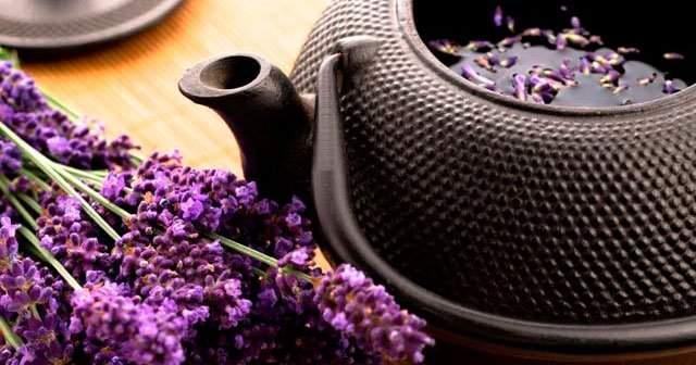 Lavanta Bitkisi Ne İşe Yarar, Lavanta Çayı Karaciğeri Temizler mi?