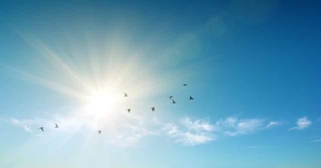 Güneş Çarpması Belirtileri Neden Olur Tedavisi Nasıldır?