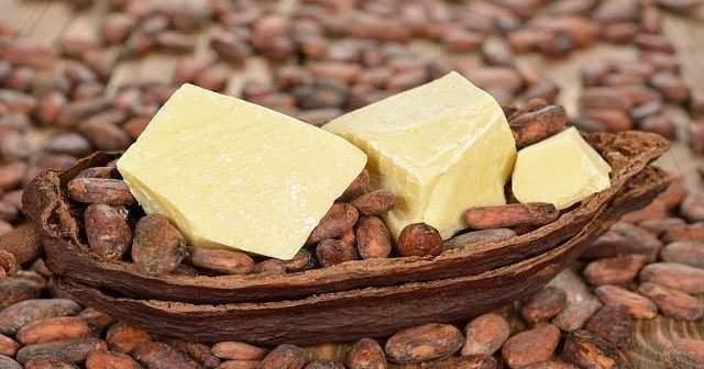 Kakao Yağı Nasıl Kullanılır Fiyatı Ne Nerede Satılır Yüze Sürülür mü?