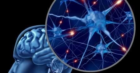 Periferik Nöropati Bitkisel Tedavisi Hangi Doktora Gidilir?