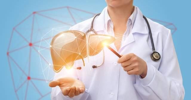 Hepatoloji Bölümü Hangi Hastalıklara Bakar Tedavi Eder?
