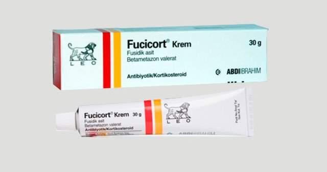 Fucicort Krem Ne İçin Kullanılır Fiyatı Nedir Fucicort Ne Kremidir Sivilce Kremi midir