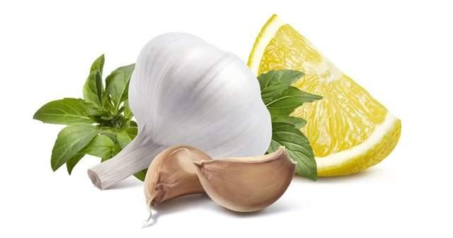 Sarımsak Limon Kürü Faydaları Limon Sarımsak Karışımı Tarifi