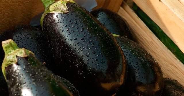 Kışlık Patlıcan Hazırlama Saklama Derin Dondurucuda Patlıcan Zararlı mı