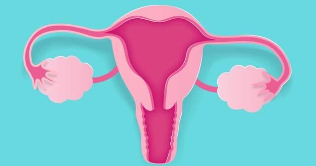 Retrovert Uterus Rahimin Arkaya Dönük Olması Rahim Tersliği Nasıl Düzelir