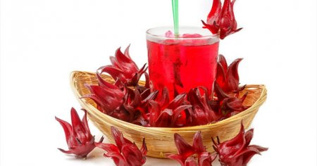 Narçiçeği Hibiskus Medine Gülü Şerbetinin Faydaları Saymakla Bitmiyor