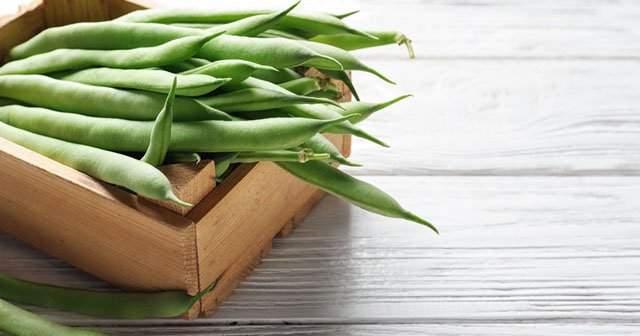 1 Porsiyon 1 Tabak Yeşil Taze Fasulye Kaç Kalori Kilo Vermeye Faydaları