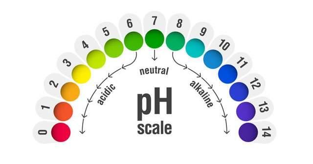 pH Ne Demek Cilt İdrar pH Değeri İdeal Kaç Olmalı?