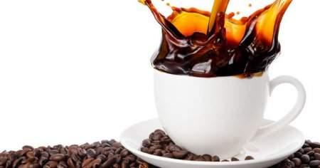 Dibek Kahvesinin İçindekiler Neler Sağlık İçin Bilinmeyen Faydaları