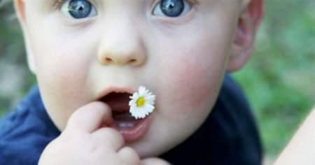 Bebek Vücudunda Yüzünde Sivilce Gibi Kızarıklık Nedenleri Tedavisi