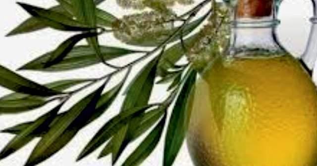 Çay Ağacı Yağı Yüze Sürülür mü Sivilceye Cilt Lekelerine İyi Gelirmi