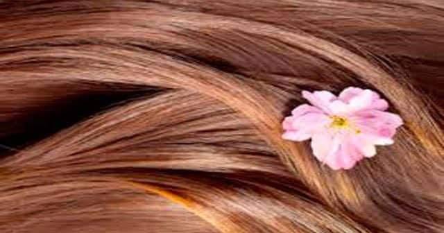 Saç Derisinin Pul PulDökülmesi Saç Derim Dökülüyor Ne Yapayım