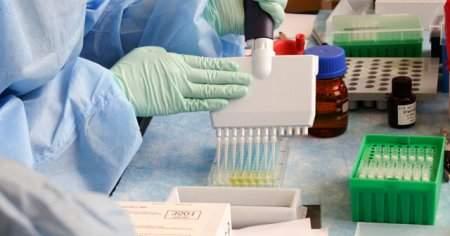 Metaplazi Tıpta Ne Demek Nedenleri Ne