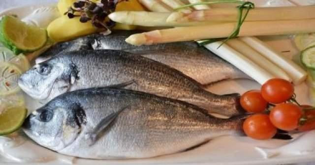 Eylülde Hangi Balık Yenir Hangi Balık Lezzetli Olur Tam Liste