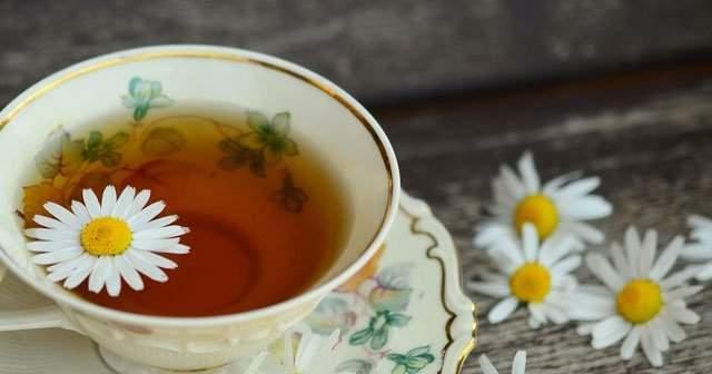Papatya Çayı Kilo Verdirir mi İştah Keser mi