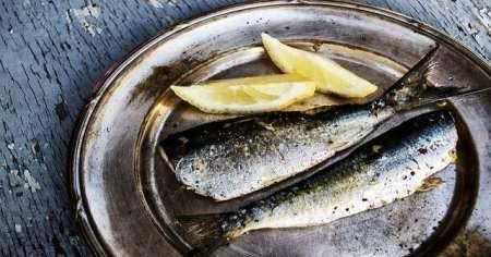 Kasım Ayında Yenilebilecek En Lezzetli Balık Türleri Ve Faydaları