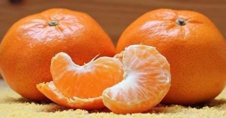 Mandalina Ne Zaman Hangi Ayda Olur Kış Meyvesi midir?