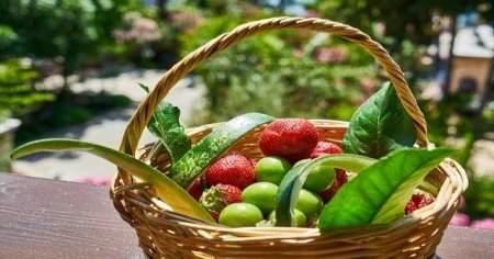 Nisan Ayında Hangi Sebzeler Ve Meyveler Yenir Sağlığa Faydaları