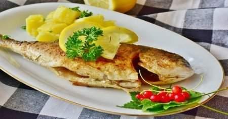 Ocakta Hangi Balık Yenir Ocak Ayı Balıkları Ve Sağlığa Faydaları