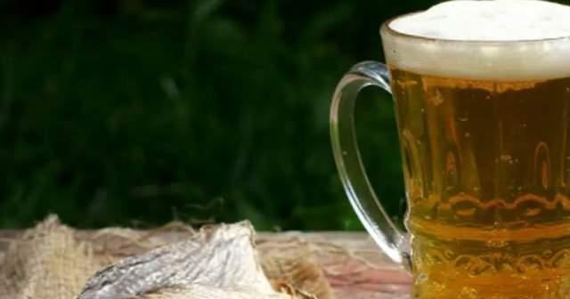 Bir Şişe Bira, 50 cl Bira, Tuborg Gold Kaç Kaloridir Sağlığa Zararları