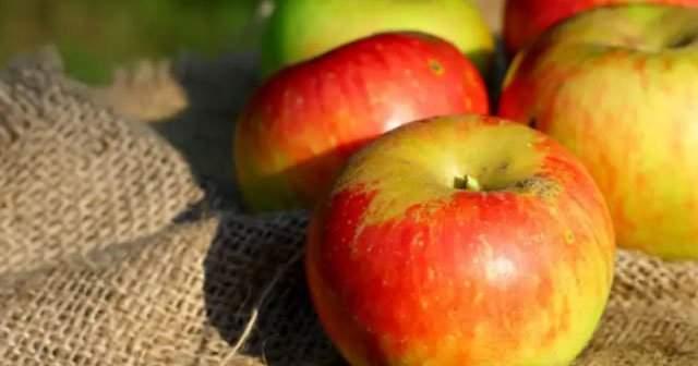 Kırmızı Elma, Sarı, Amasya Elması Kalori ve Karbonhidrat Değeri Nedir