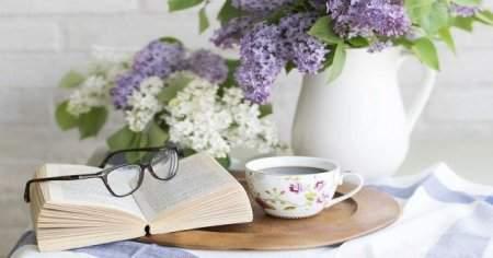 Zeytin Yaprağı Çayının Zararları Ve Faydaları Nelerdir