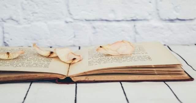 Yûsuf Nâbî kimdir? Yûsuf Nâbi'nin şiiri ve hikayesi nasıldır?