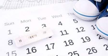 Yumurtlama Olmamasının Belirtileri Nedenleri ve Tedavisi