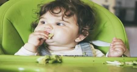 Bebeklere hem doyurucu hem de lezzetli püre tarifleri