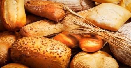 Fırın ekmeğini aratmayacak ekmek yapan 11 ekmek yapma makinesi