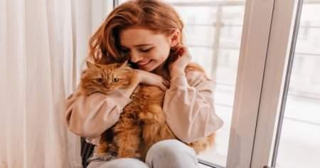 Kedi sahibi olmanın kanıtlanmış 11 faydası